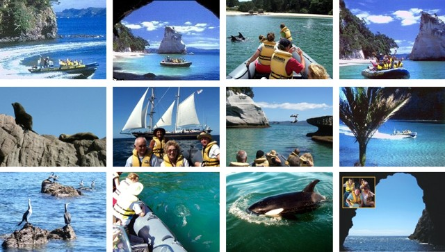 Cathedral Cove Boat Tour